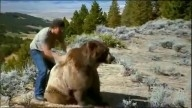 Mans Best Friend 1000 Pound Grizzly Bear!